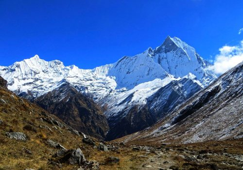 The snow peak soaring towards the sky is the great experience and view of trekking through Annapurna Sanctuary with himalayan summit Annapurna Sanctuary Trek 15 days package.